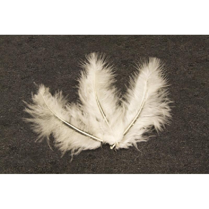 plumes Ivoires