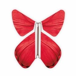Livret magique  papillons