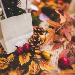 Assortiment d'automne